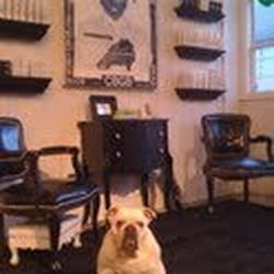 Chez shay hair salons 63 unquowa rd fairfield ct for Adams salon fairfield ct