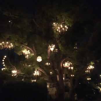 Chandelier Tree - 518 Photos & 166 Reviews - Local Flavour - 2811 ...