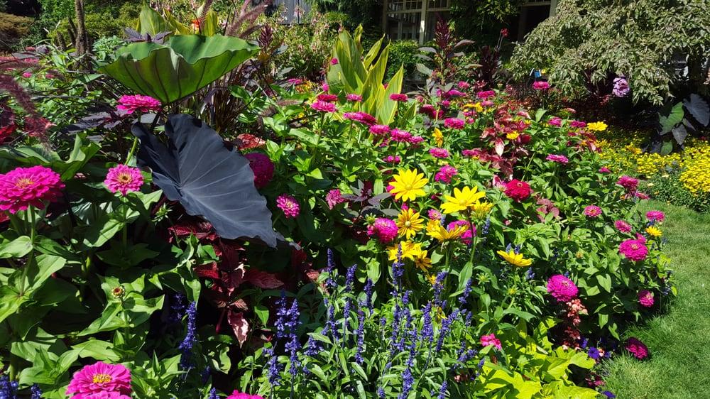 Rose Garden 20 Photos Botanical Gardens 2099 Beach