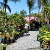 Photo Of Pala Mesa Nursery Fallbrook Ca United States Too Many Beautiful