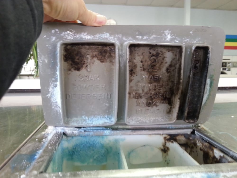 Soap Dispenser Filled With Black Mold Yelp