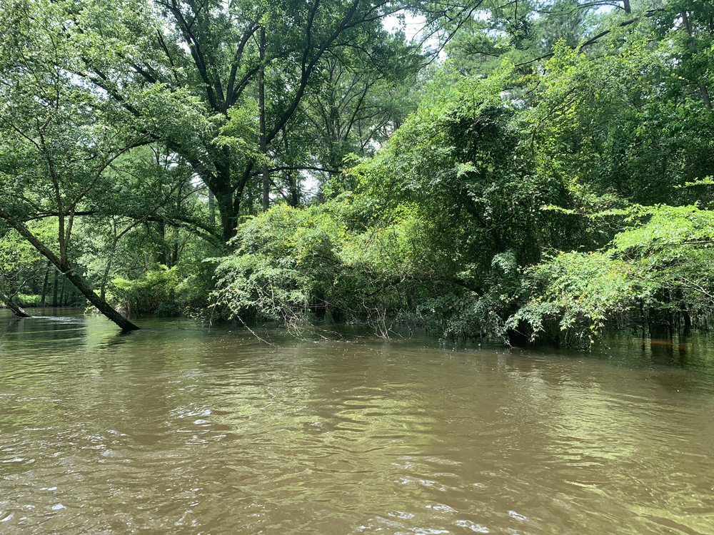 Turning Basin: 200 Bayou St, Jefferson, TX