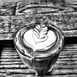 flying machine coffee urbana il
