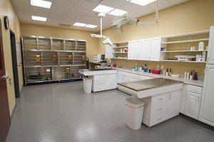 Stony Brook Animal Hospital: 4600 Taylorsville Rd, Louisville, KY