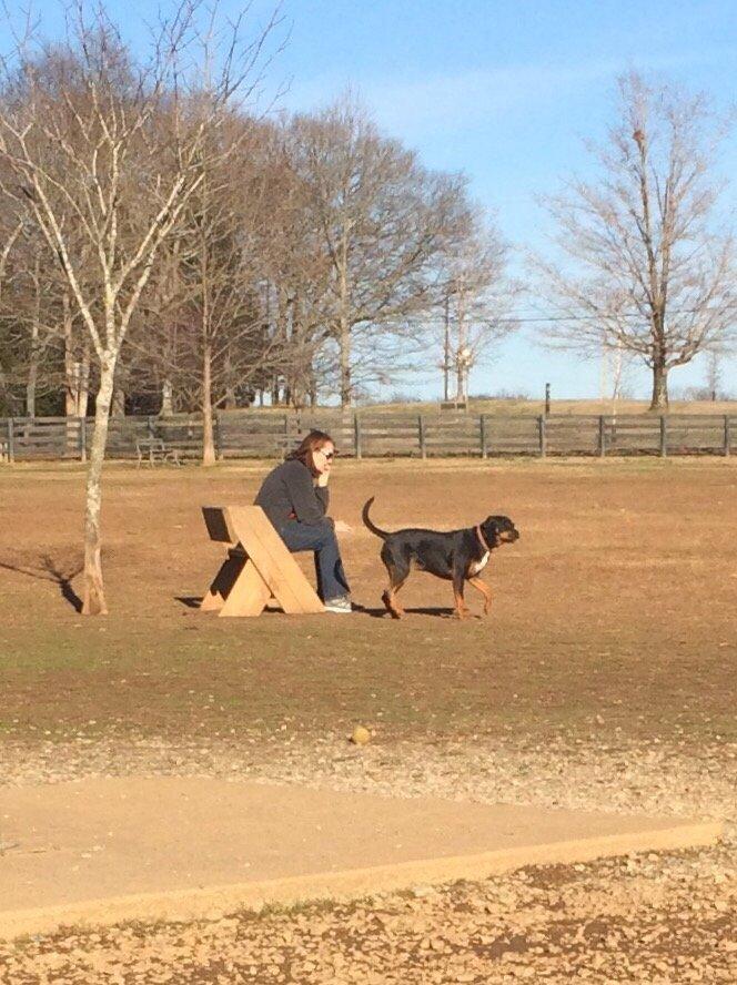 Warner Dog Park Nashville Tn