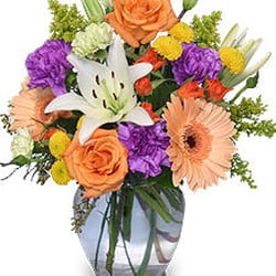 Country Garden Florist Florists 501 E Ridgeway St Clifton