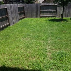 Green Bee Lawn Care - 15 Photos & 14 Reviews - Landscaping