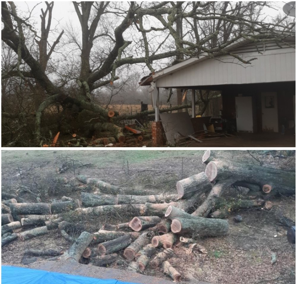 Rowdy Bond - Climber & Arborist: Daingerfield, TX