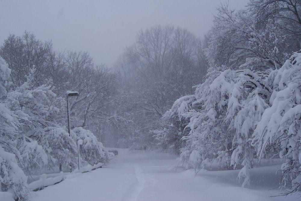 Westmoreland Hills Park: 5398 Elliott Rd, Bethesda, MD