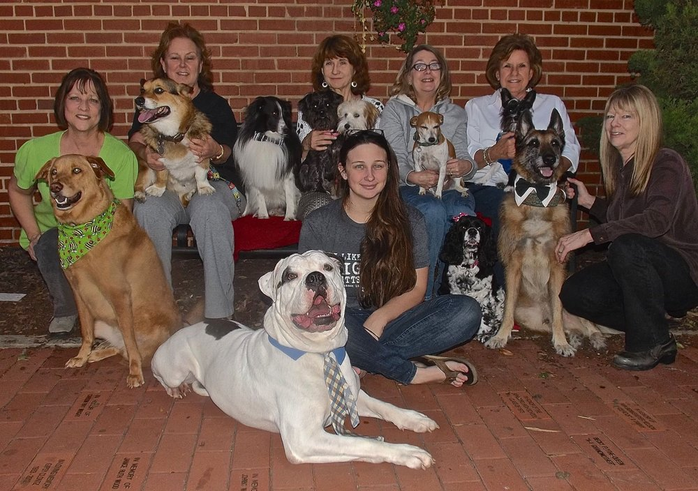 Southern Tails Dog School: 160 N Park St, Asheboro, NC