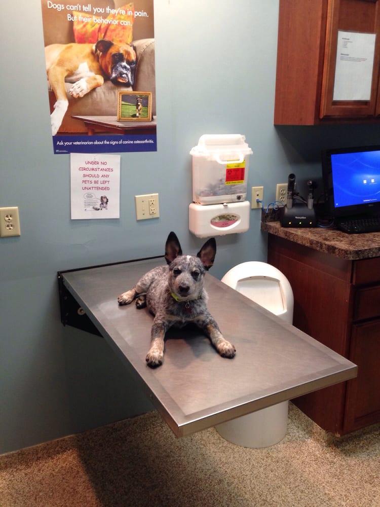 Merritts Creek Veterinary Center: 6474 Merritts Creek Rd, Huntington, WV