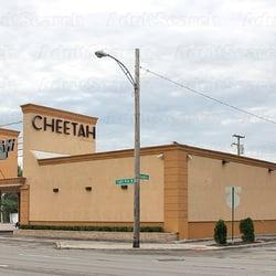 detroit Cheetahs adult michigan entertainment