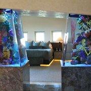 Amazing ... Photo Of Living Art Aquatic Design   Los Angeles, CA, United States