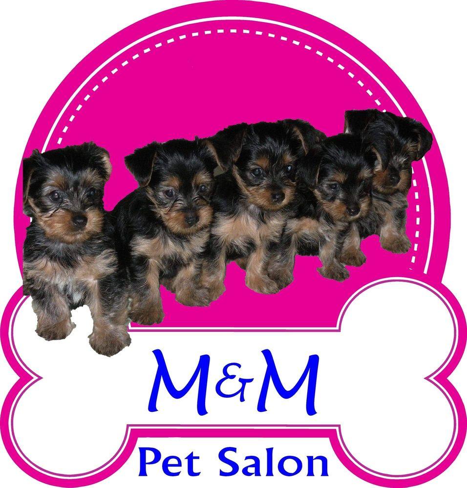 M&M Pet Salon: 3601 Poplar Springs Dr, Meridian, MS