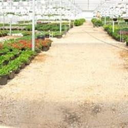 Tlc Garden Centers 32 Photos Jardinerie P Pini Re