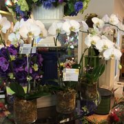 Sandy springs flowers 23 photos 20 reviews florists 6600 peachtree flower shop inc mightylinksfo