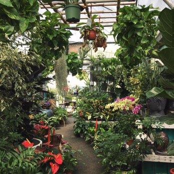 Merrihew\'s Sunset Gardens - 82 Photos & 75 Reviews - Nurseries ...