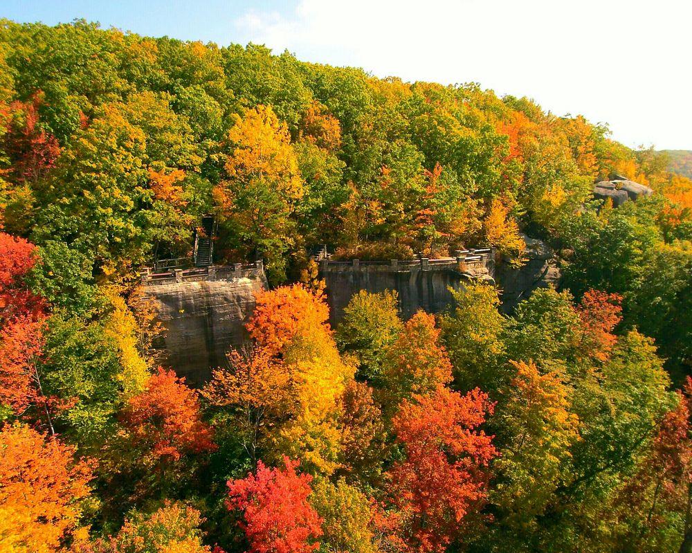 Allegheny National Forest Visitors Bureau: 80 East Corydon St, Bradford, PA