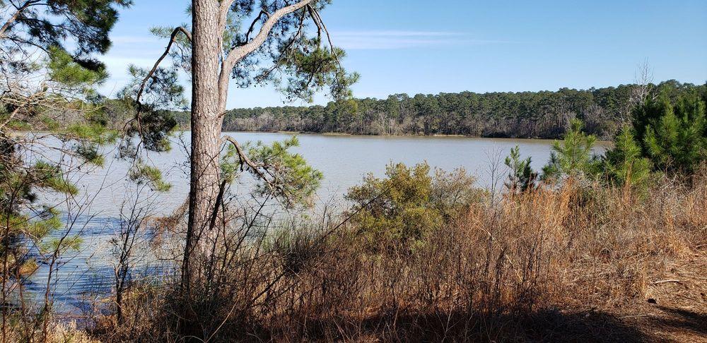Huntsville State Park: Interstate 45 And Park Rd 40, Huntsville, TX