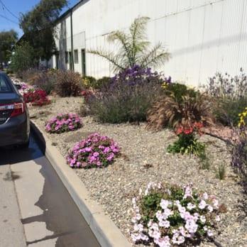 Photo Of California Granite Natural Stone Guadalupe Ca United States The