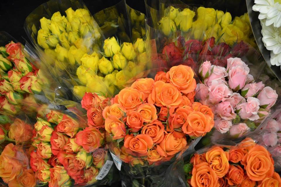 English Gardens 26 Foto E 14 Recensioni Vivai E Giardinaggio 22602 Ford Rd Dearborn