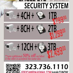 Eagle Eye Security Systems - Westlake, Los Angeles, CA