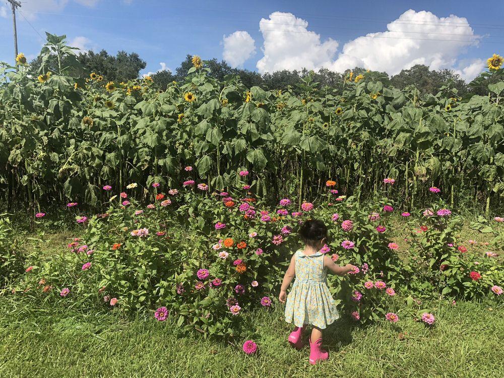 Stanley Pond Adventure Farm: 15426 County Rd 48, Astatula, FL