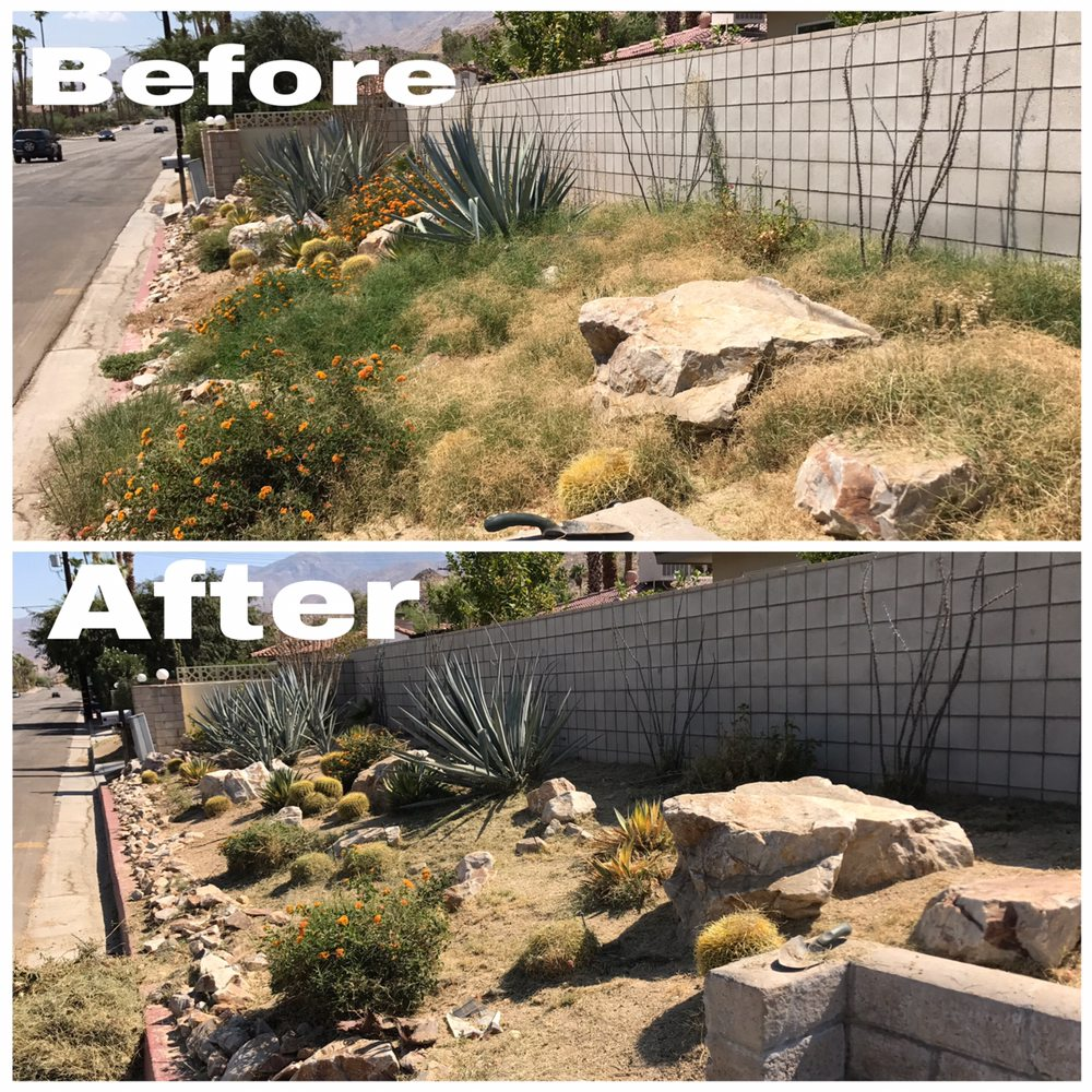 General Yard Clean Up Yelp