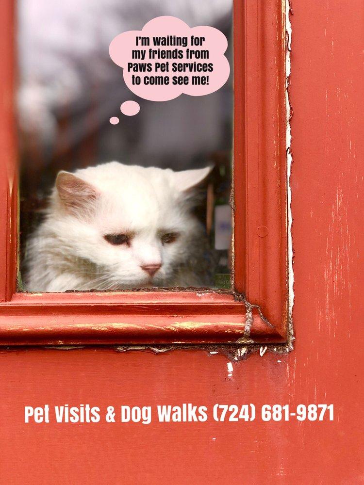 Paws Pet Services: New Kensington, PA