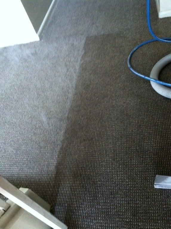 Area Carpet Cleaners Near Me