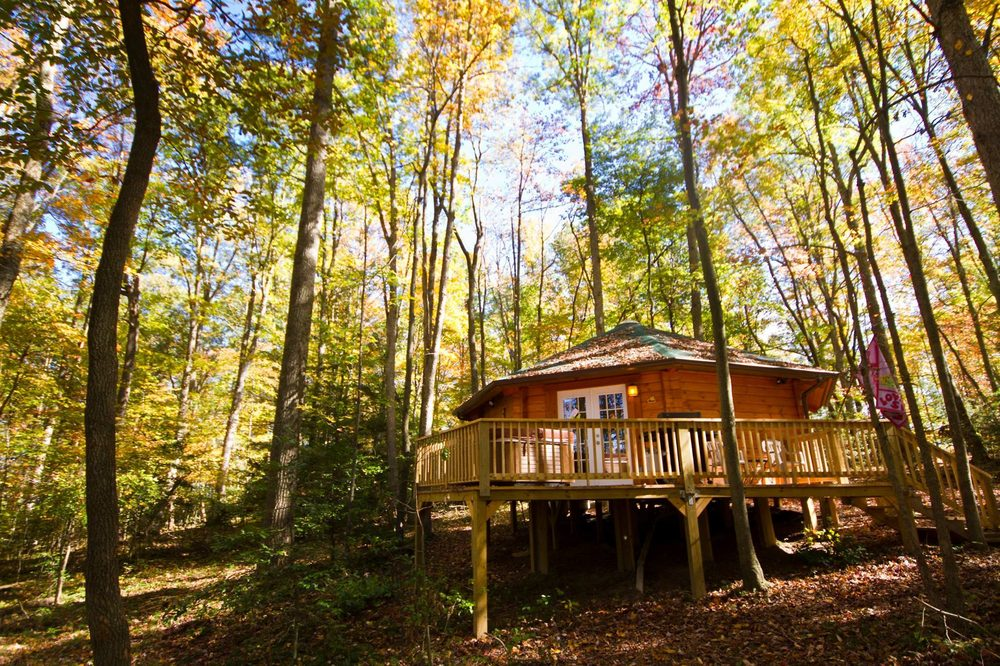 Country Road Cabins: 1508 Sunday Rd, Hico, WV