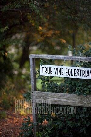 True Vine Equestrian Center: 72861 28th St, Lawton, MI