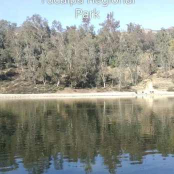 Lara d 39 s reviews palm desert yelp for Yucaipa regional park fishing