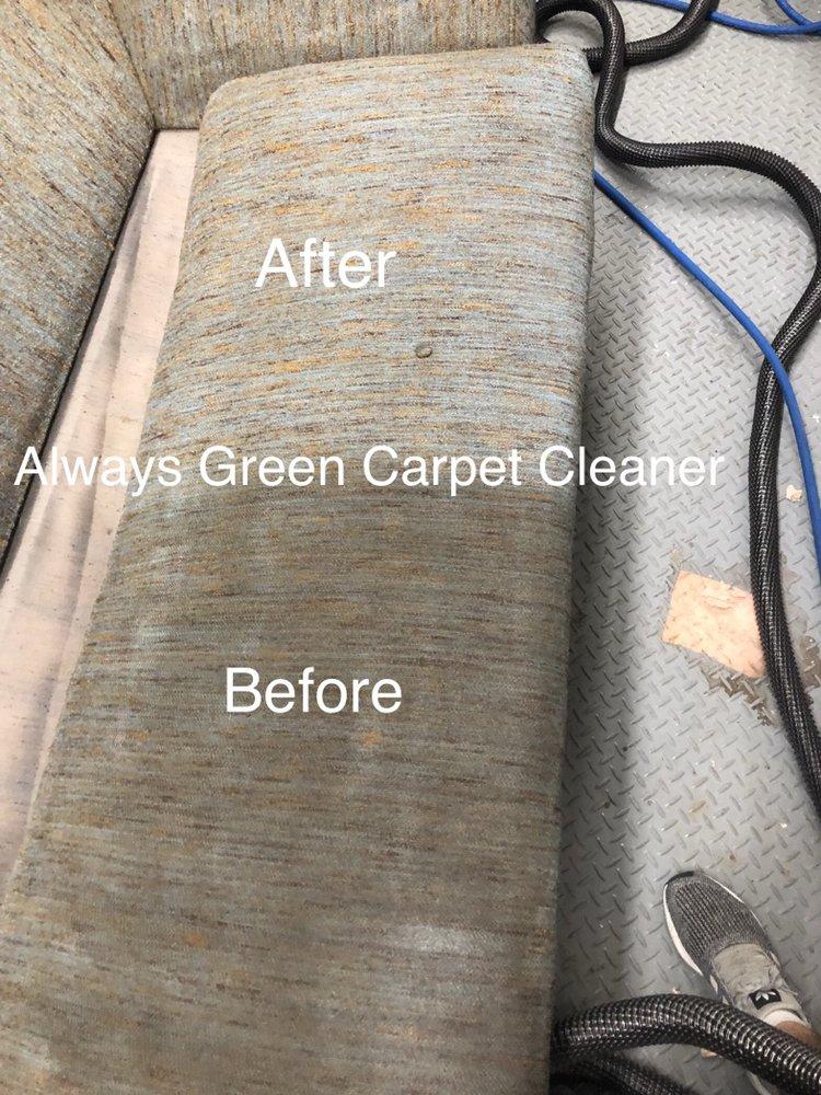 Always Green Carpet Cleaner