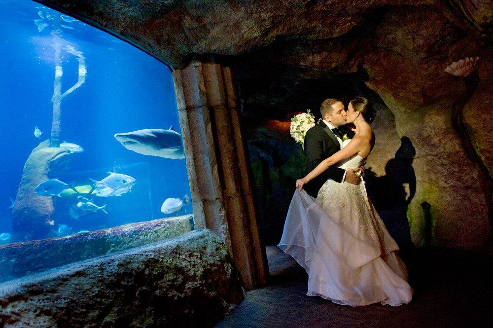 Long Island Aquarium: 431 E Main St, Riverhead, NY