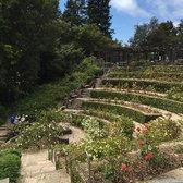 The Berkeley Rose Garden 450 Photos 181 Reviews Botanical