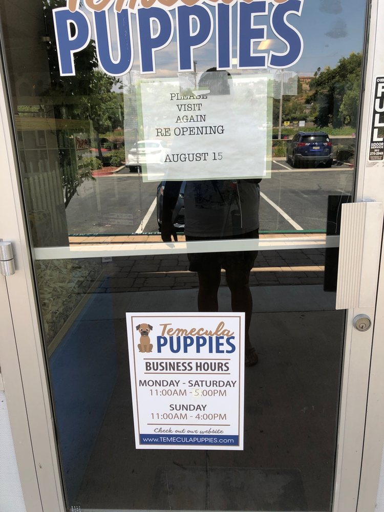 Puppies 4 Less