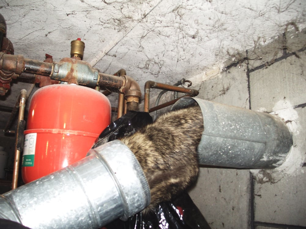 Ultimate Chimney Sweep Contractors 90 Mendon St