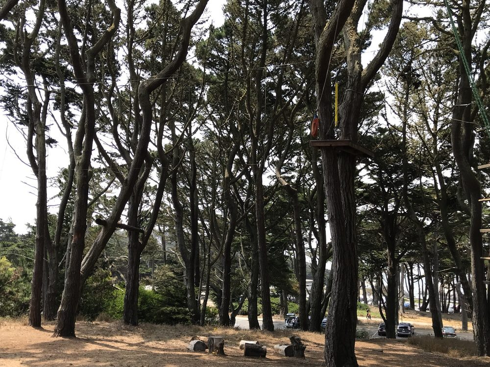 Fort Miley Adventure Challenge Course: 1600 Holloway Ave, San Francisco, CA