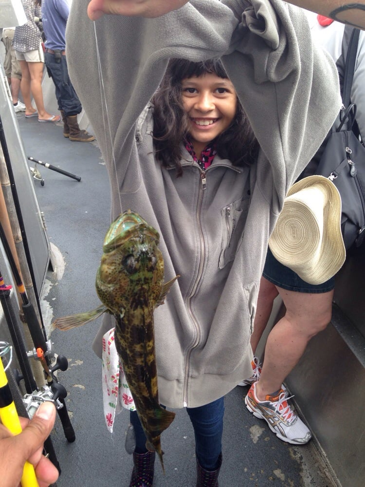Lingcod too small to keep yelp for Marina del rey fishing report