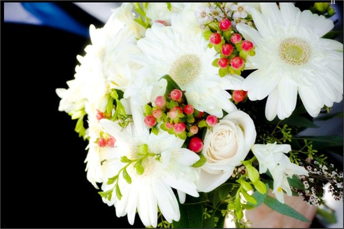 Kaber Floral Company: 516 I St, Laporte, IN