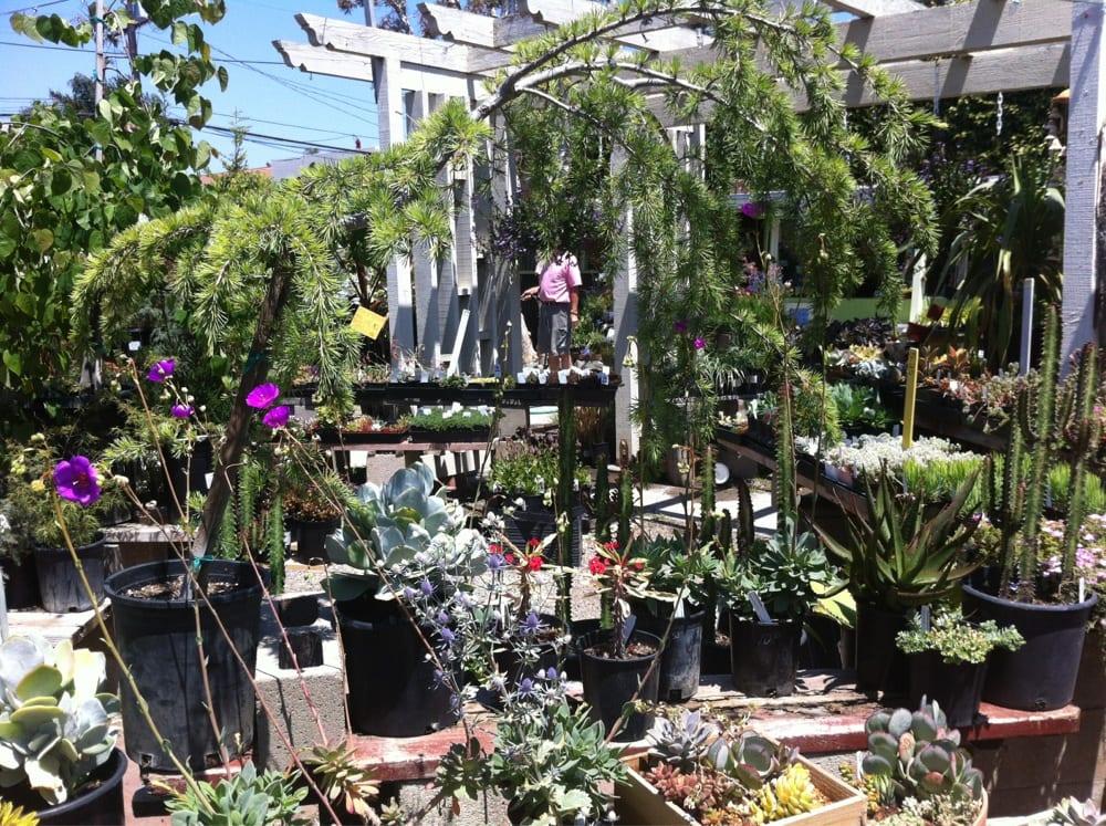 Photos For Brita 39 S Old Town Garden Yelp