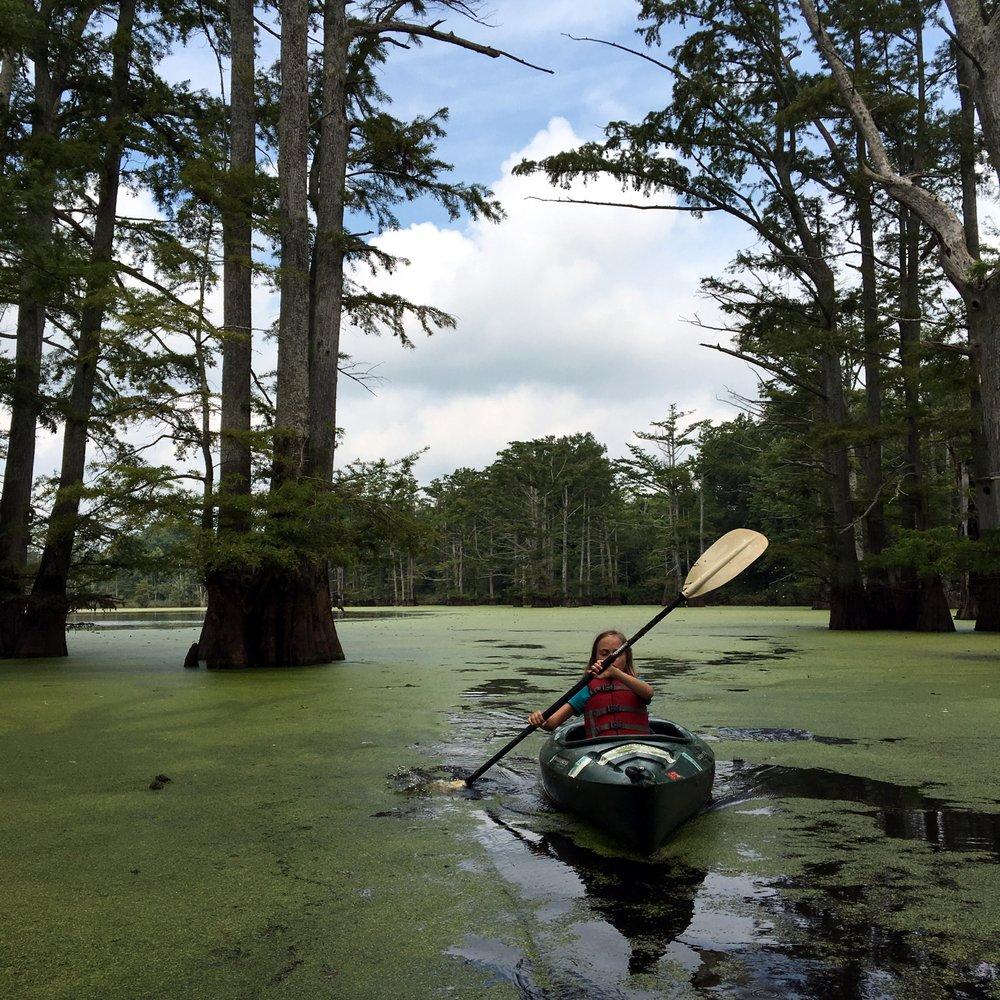 White Crane Canoe Rentals and Guide Service: 240 Dean Ln, Ullin, IL