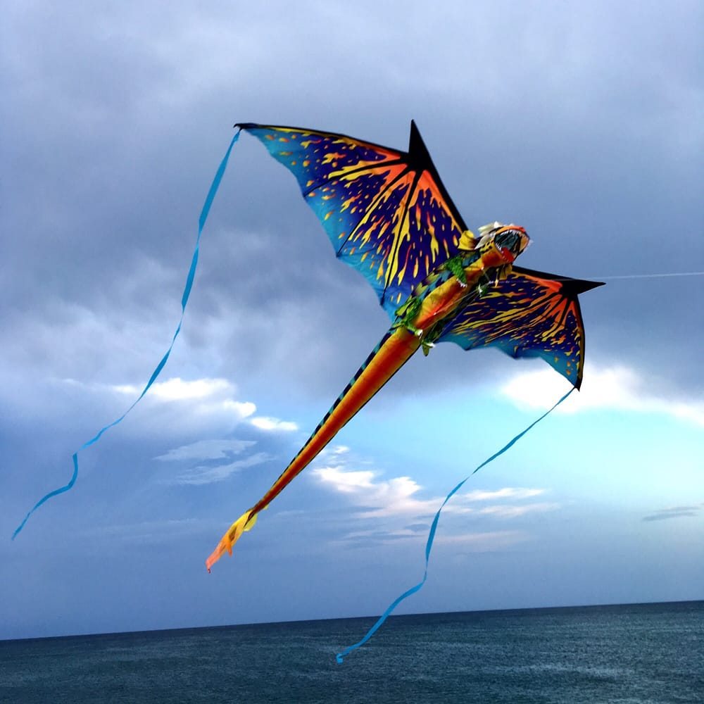 Kitty Hawk Kites - Nags Head - 21 Photos & 44 Reviews - Toy Stores