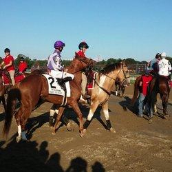 Saratoga Race Course - 175 Photos & 120 Reviews - Stadiums