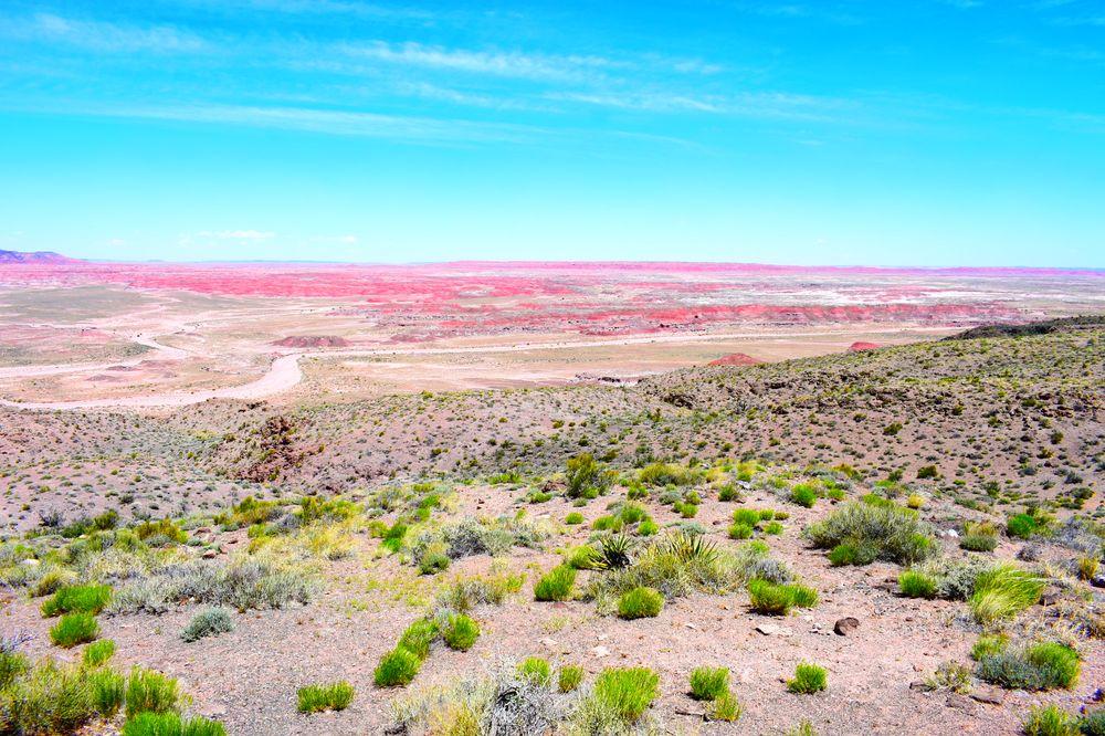 Painted Desert: Cameron, AZ