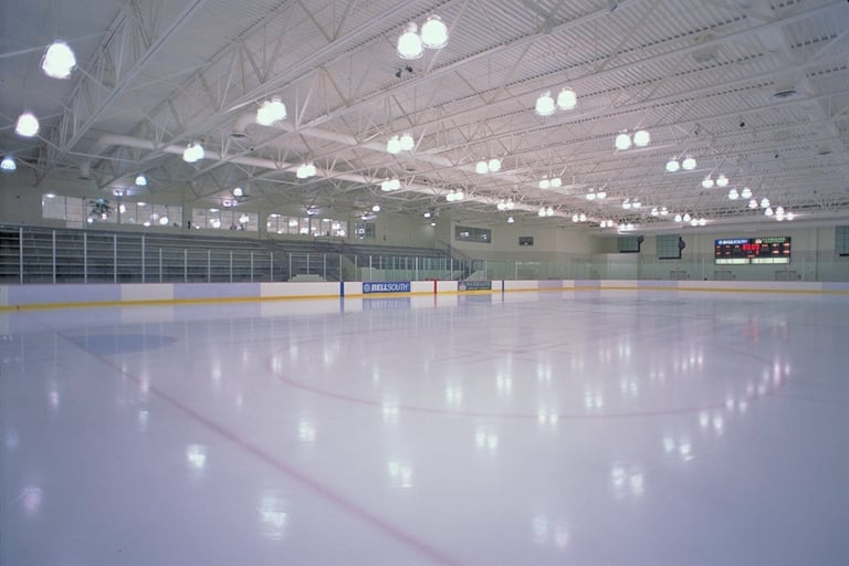 RDV Sportsplex Ice Den: 8701 Maitland Summit Blvd, Orlando, FL