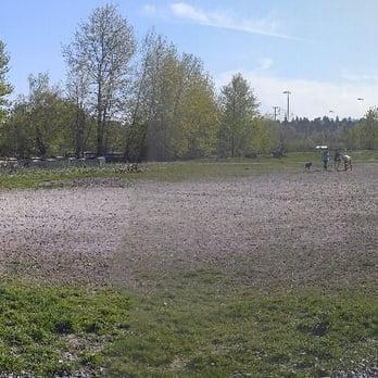 Magnuson Off Leash Dog Park Seattle