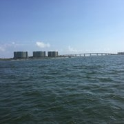 Photo Of Dolphin Boat Trips By Southern Rose Orange Beach Al United States