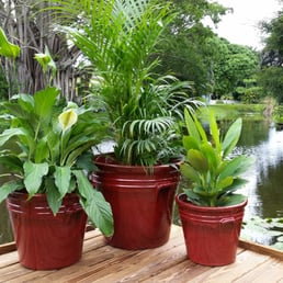 Pottery patch maison jardin 412 tall pines rd west for Jardin west palm